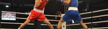 Школы и стили бокса