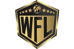 В ММА появится новая лига