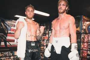 Братья Джейк и Логан Пол. Из блогеров в боксеры