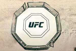 Бойцовский остров UFC: Поединки пройдут прямо на пляже