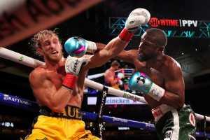 Кормье и Нганну отреагировали на результат боксерского поединка Мейвезер – Пол