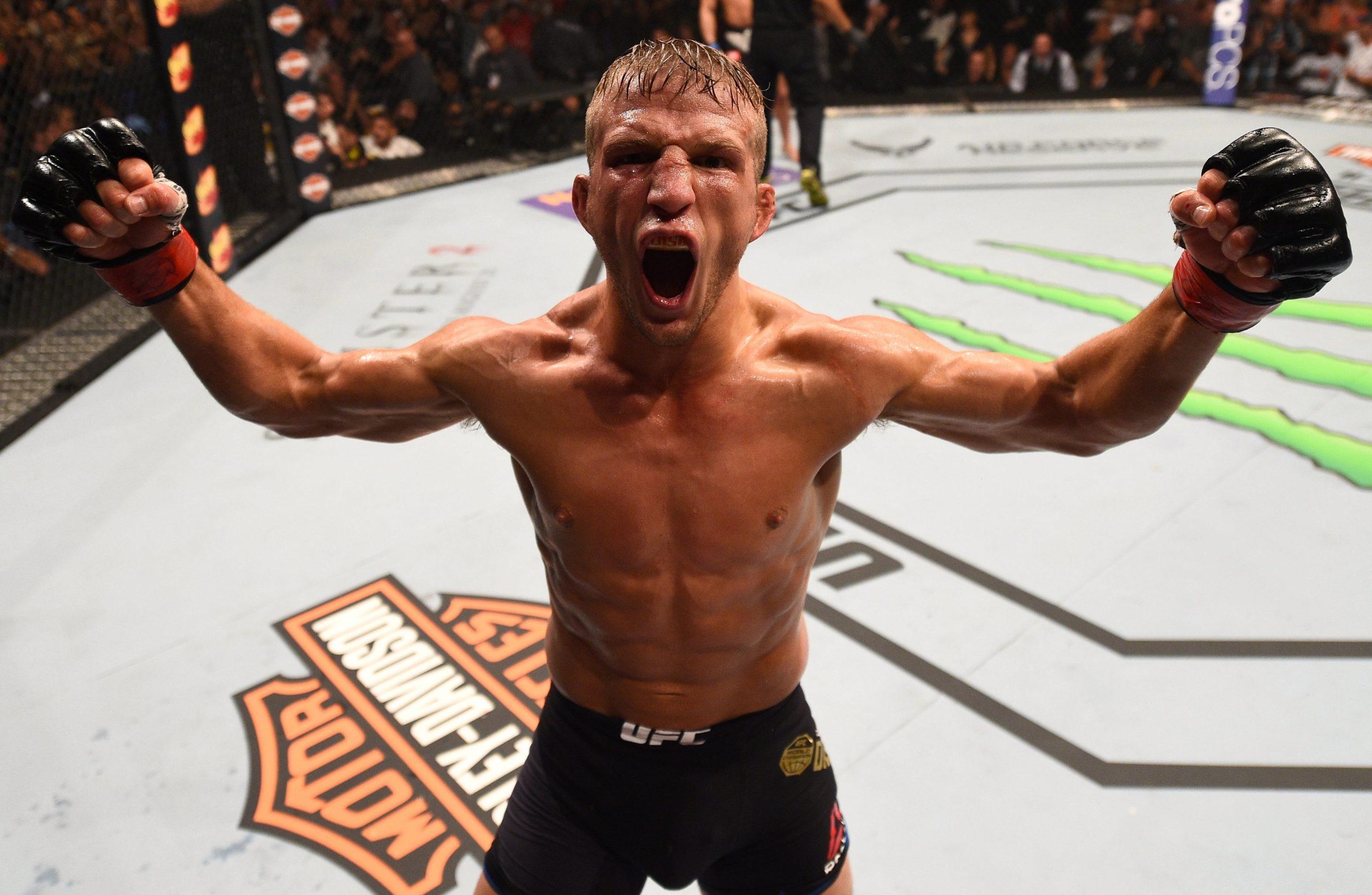 Ти Джей Диллашоу - боец UFC: статистика и видео выступлений, биография